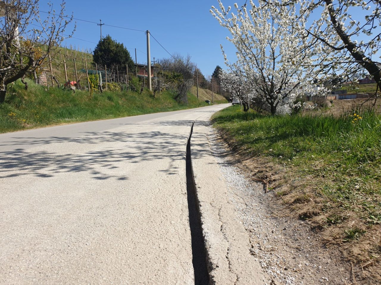 Gradnja omrežja v Plešivem, občina Brda.